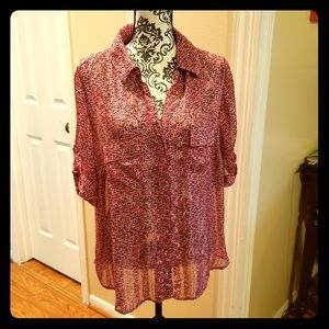 Sheer Buttoned down Blouse